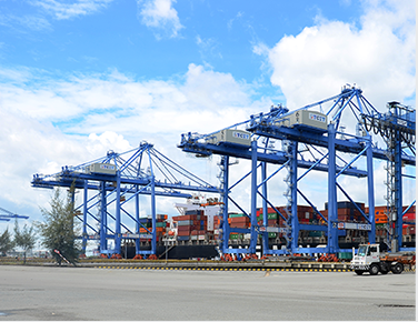 Tally service and Container handling service